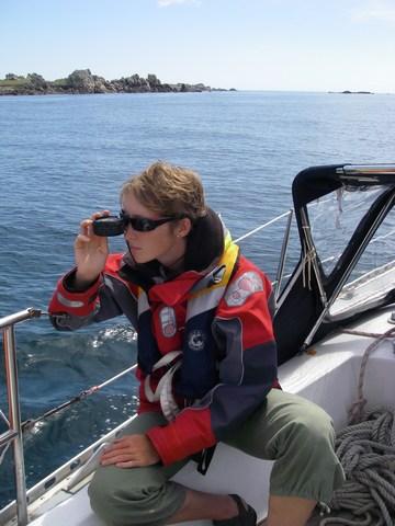 Clairette au relèvement dans les îles Scilly
