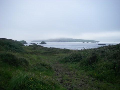 mini-15-Vue sur Cape Clear.JPG