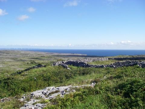 mini-17-Murets de pierre et Cliffs of Moher.JPG
