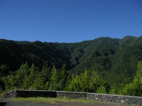 Les montagnes pleines de foret.JPG
