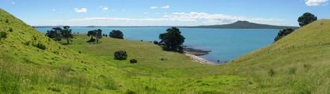 Le vallon de Browns Island, avec Auckland et Rangitoto au loin