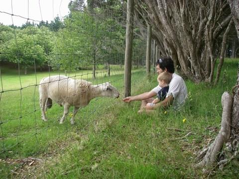 Monsieur Mouton accueille les garçons pour le camping